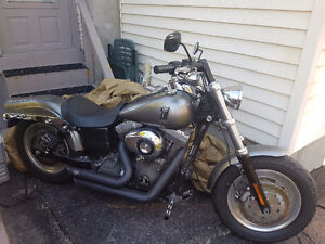 Fat bob 2009 need to go before winter