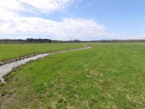 165 acre farm near Waubaushene