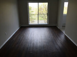 Newly Renovated 1 Bedroom Apartments Available!