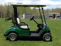 Golf Car - 2015 Yamaha Gas EFI - NEW