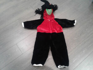 Witch Halloween costume