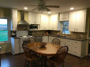 Beautifully Renovated Country Home Windsor Region Ontario image 5