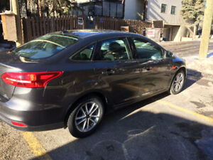2015 Ford Focus SE Manual 5 speed 2,0 L  only 18,187 km