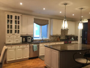 Kitchen Cabinets and Island with Granite Countertops