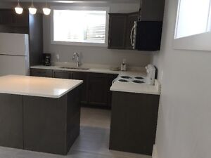One bedroom Large Basement suit in a Highend newl Home