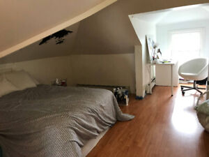 1 ROOM SUMMER SUBLET (PAYZANT AVENUE) WANTED!