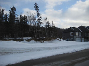 Lot #47, 5 South Brook Point-Muriel or Richard-NL Island Realty