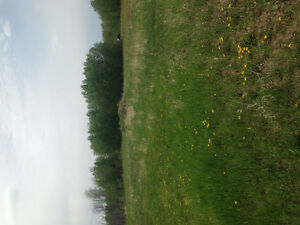 Red deer hill acreage for sale