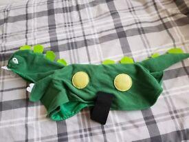 Dinosaur dog outfit