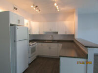 DOWNTOWN -  Two Bedroom Two Bathroom Apartment