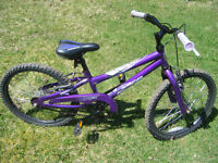 Norco 20 inch Girls bike for sale