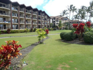 Ocean view condo in Poipu, Kauai, Hawaii $1200 U.S.