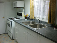 Superb Downtown Annex Location: Bright 1 bedroom basement apt