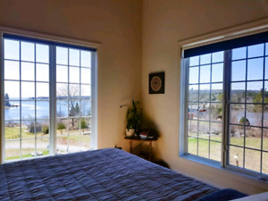 Cove Life Ocean Vacation Rental