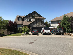 Abbotsford 4 bedroom, 4 bath, view home for rent