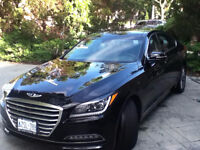 Professional Mobile Auto Detailing -- Cars, Vans, Trucks, Oh My!