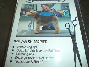DVD of the Welsh Terrier / Instructional Grooming DVD