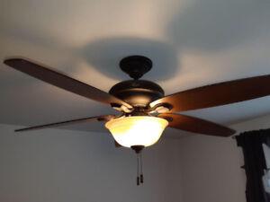 Luminaire/ Fan