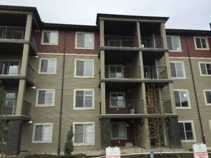 Top Floor 2B&2W+Den+1 UG Parking and Storage @ SW Edm