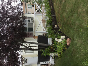 $650 House for rent. Shared accomodations available Immediately!