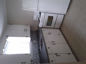 Newly renovated 1 bedroom plus den for rent. Move in ready