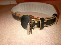 Weightlifting Belt (back support)...