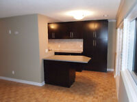 Large – 2 Bed 2 Level Condo – Crystal Beach