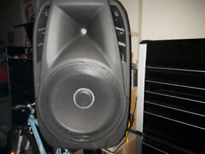 1000 watt pa system two microphones. Bluetooth. wicked system.