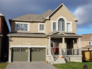 BRAMPTON MISSISSAUGA HOUSES AND CONDOS ON RENT, LEASE & SALE