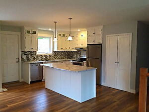 Newly renovated house with basement suite. Bright and Sunny