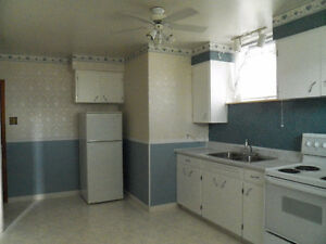 Large Duplex 2 bedroom basement apt.