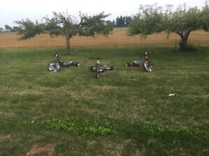 Electric trikes for sale