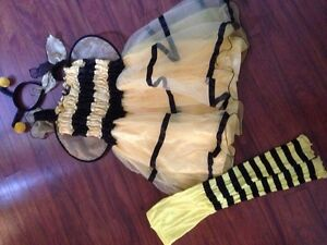 Bee Costume---approx size 8/10 Peterborough Peterborough Area image 1