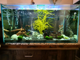 3ft tank no stand lots of extras