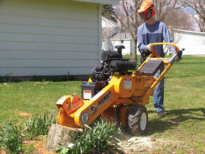 Stump Grinder For Rent - Delivered