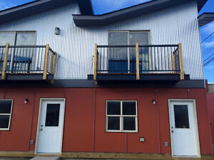 Brand New 2 bedroom condos for rent