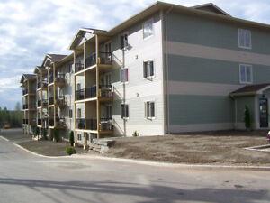 3 Bedroom Apartment Deer Lake