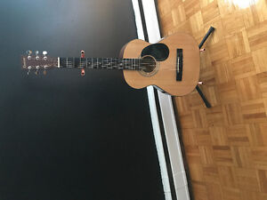 Denver guitar with stand case tuner and guitar picks