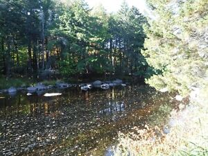 Picturesque Wooded Lot with River Frontage