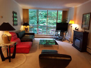LARGE TW0 BEDROOM, FULLY FURNISHED APARTMENT, NORTH VANCOUVER