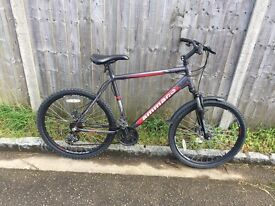 Gents Ammaco MTX600. Serviced, Free Lock/Lights/Delivery