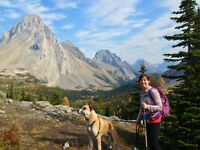 House/Pet Sitter - Canmore/Banff