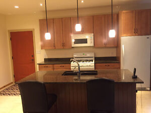 PRICE DROP - Whole Kitchen - Cabinets, Countertops, Appliances