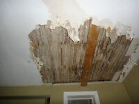 MATCH AND REPAIR STAINED AND DAMAGED CEILING STIPPLE.
