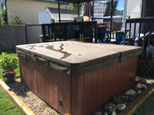 Arctic Spas Voyageur hot tub 2010 built works great