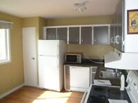Spacious townhouse in Beacon hill!!