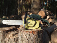 Pioneer P41 chainsaw