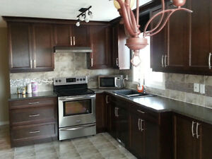 Beautiful Full House for Rent in NorthEast