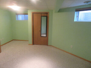 Brand New One Bed Room basement Apt for rent in Millwoods area