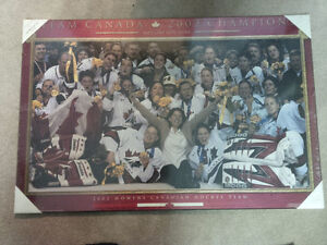 2002 Salt Lake City Hockey Champs Pictures - BNWT